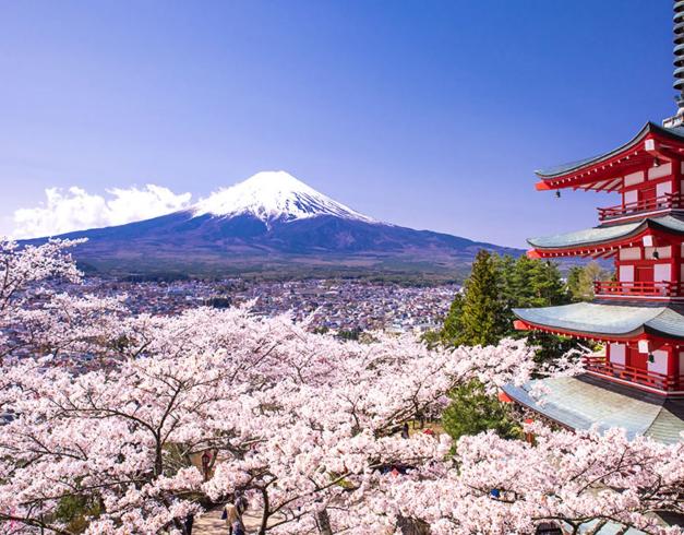 promo - tour - murah - japan