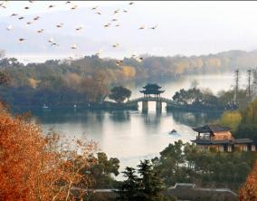 WH01 - Land Tour 5D Shanghai - Suzhou - Hangzhou ( Jan - Dec 2017 )